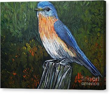 Little Blue Bird Canvas Print by Reb Frost
