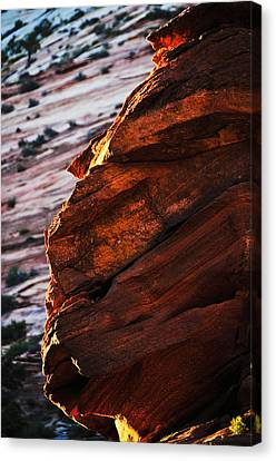 Little Brother Canvas Print by Skip Hunt