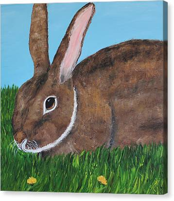 Little Brown Bunny Canvas Print by Christie Minalga