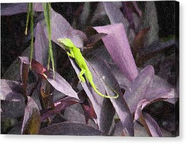 Canvas Print featuring the photograph Little Green Lizard by Donna  Smith