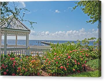 Little Harbor Tampa Bay Canvas Print by John Black