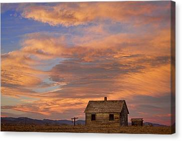 Little House On The Colorado Prairie Canvas Print by James BO  Insogna