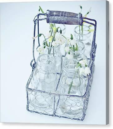 Little Jars In Wire Rack Canvas Print