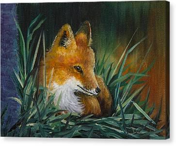 Little Kit Canvas Print by Dee Carpenter