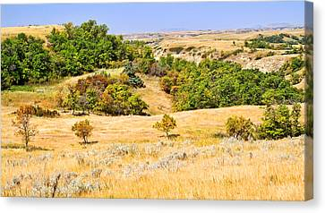 Little Missouri River Grasslands Canvas Print by Bill Morgenstern