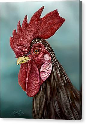 Little Red Rooster Canvas Print by Jephyr Art