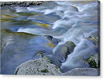 Little River Great Smoky Mountains Canvas Print by Dean Pennala