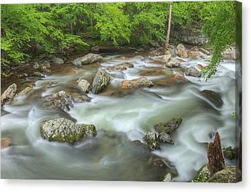 Little River Rapids Canvas Print by Dean Pennala