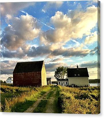 Little Tancook Island Farmhouse Canvas Print by Luke Kingma