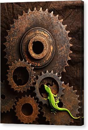 Lizard On Gears Canvas Print by John Wong