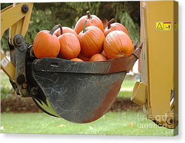 Load Of Pumpkins Canvas Print by Ginger Harris