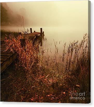 Loch Ard Early Mist  Canvas Print by John Farnan