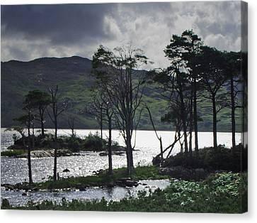 Loch Assynt Canvas Print by Steve Watson