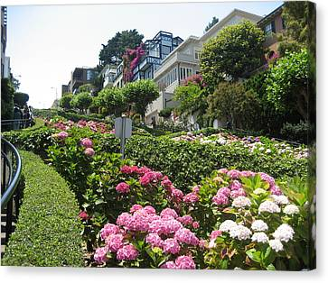 Lombard Street Canvas Print by Dany Lison