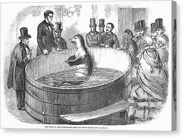 London: Talking Fish, 1859 Canvas Print by Granger