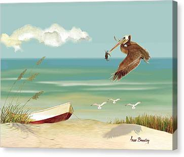 Lone Pelican Canvas Print by Anne Beverley-Stamps