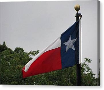 Lone Star Flying Proud Canvas Print by Shawn Hughes