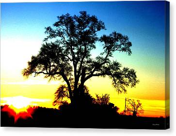 Canvas Print featuring the photograph Lone Tree At Sunrise by George Bostian
