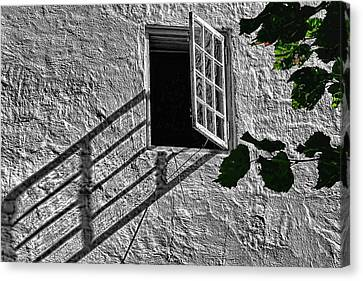Lone Window Canvas Print