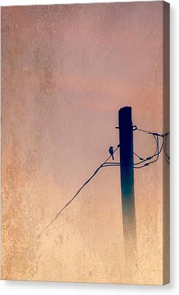 Lonely Soldier Canvas Print by Susan Bordelon