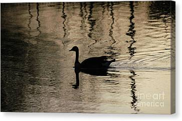 Canvas Print featuring the photograph Lonely by Vilas Malankar