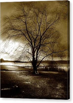 Lonely Willow Canvas Print