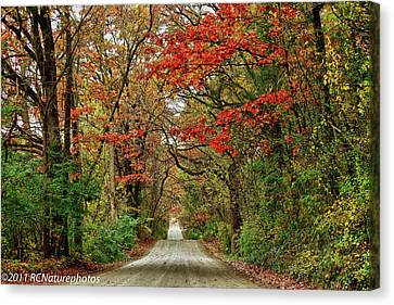 Canvas Print featuring the photograph Long Bumpy Dirt Road by Rachel Cohen