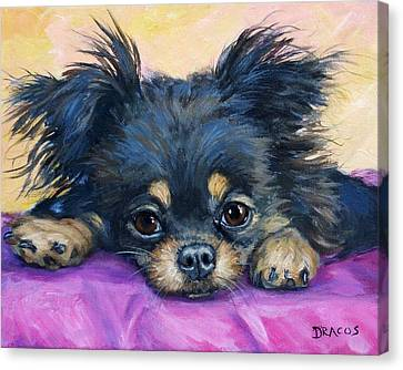 Longhaired Chihuahua Puppy Black And Tan Canvas Print by Dottie Dracos
