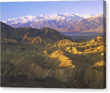 Looking At Panamint Range Canvas Print by Tim Fitzharris
