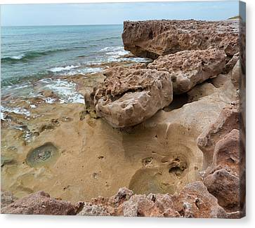 Looking Down From Above Blowing Rocks Preserve Canvas Print by Michelle Wiarda