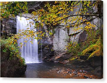Looking Glass Falls Canvas Print by Alan Lenk