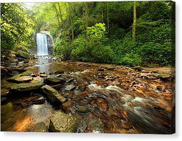 Canvas Print featuring the photograph Looking Glass Falls by Doug McPherson