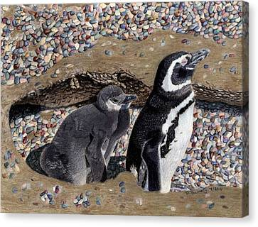 Looking Out For You - Penguins Canvas Print by Patricia Barmatz