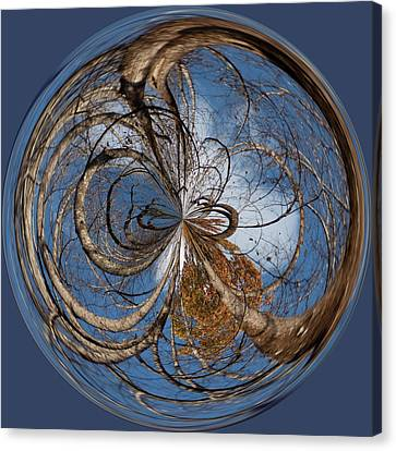 Looking Up Orb Canvas Print