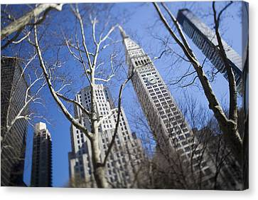 Looking Up Through Trees At Skyscrapers Canvas Print by Axiom Photographic