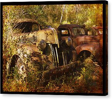 Lost In Time Canvas Print by Carla Parris