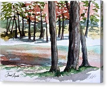 Lost Maples Canvas Print by Frank SantAgata