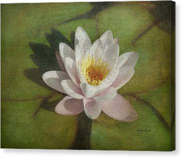 Lotus Blossom Textured Canvas Print by Cindy Wright