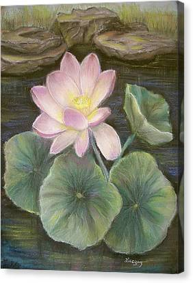 Lotus Canvas Print by Luczay
