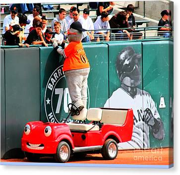 Lou Seal Fans Canvas Print by Tap On Photo