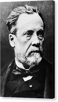 Louis Pasteur, French Microbiologist Canvas Print
