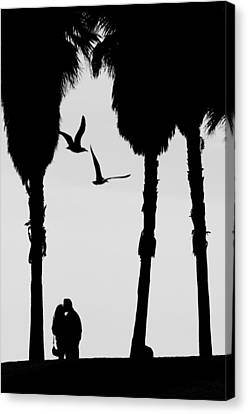 Love Birds Canvas Print by Russell Styles