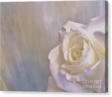 White Pearl Canvas Print - Love Lifted Up by Marsha Heiken