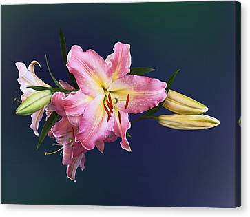 Lovely Pink Lilies Canvas Print by Susan Savad