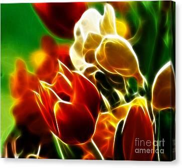 Lovely Tulips Canvas Print by Pamela Johnson