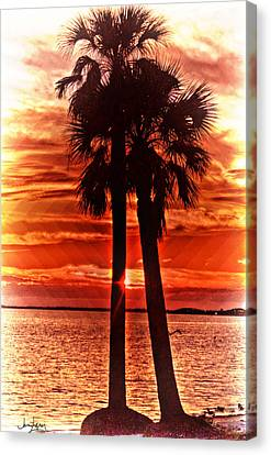 Loving Palms-the Journey Canvas Print by Janie Johnson