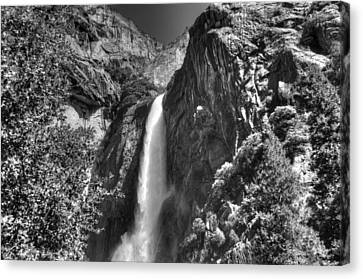 Lower Yosemite Falls Bw Canvas Print by Bruce Friedman