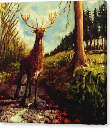 Lowland Stag Canvas Print by Graham Keith