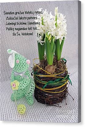 Lt Easter Greeting. Bunny. Lithuanian Text Canvas Print