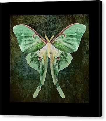 Canvas Print featuring the digital art Luna by Deborah Smith